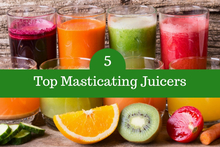 masticating juicers2